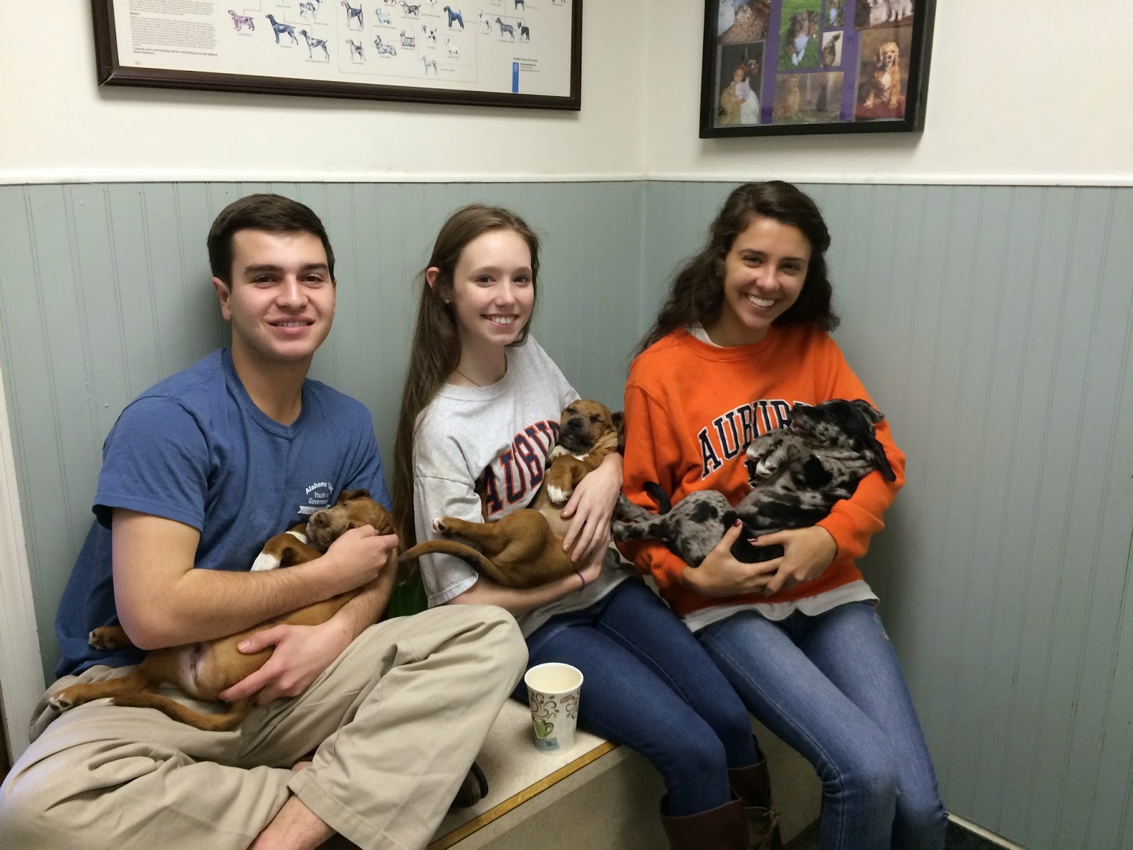 Catholic Anatomy Students Assist in Surgery at Shelter 2