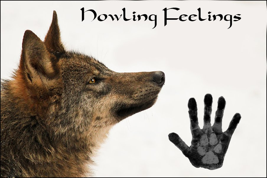 Howling Feelings