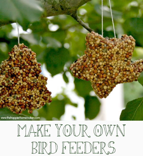 http://www.thehappierhomemaker.com/2013/03/kids-crafts-make-your-own-birdfeeders.html?_szp=201740