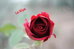 Gracias Kiya
