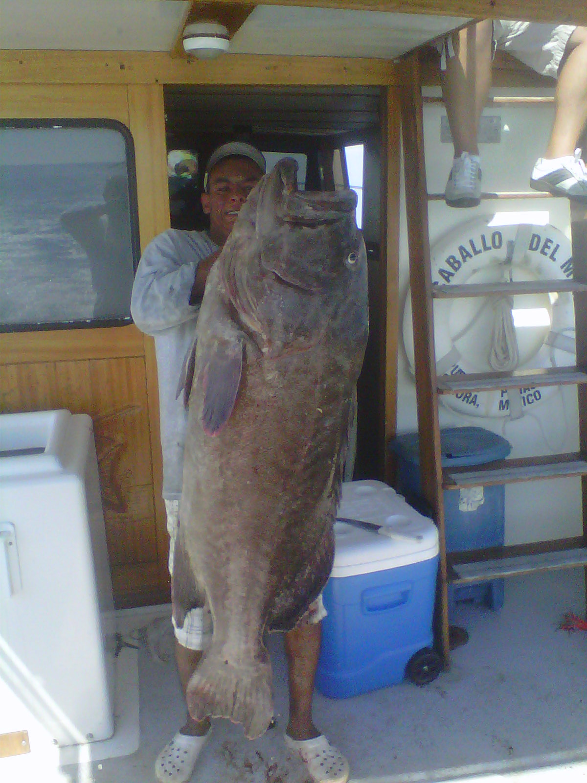 Fishing in rocky point big fish in rocky point sonora for Puerto penasco fishing