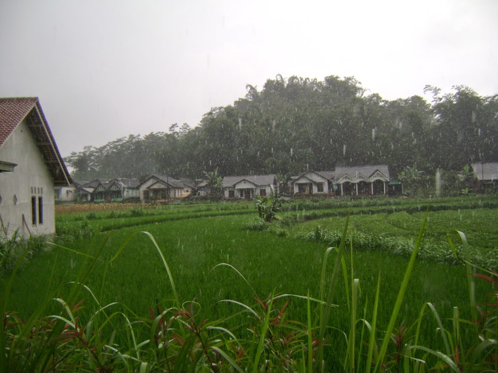 Jual Tanah di Temanggung Jawa Tengah