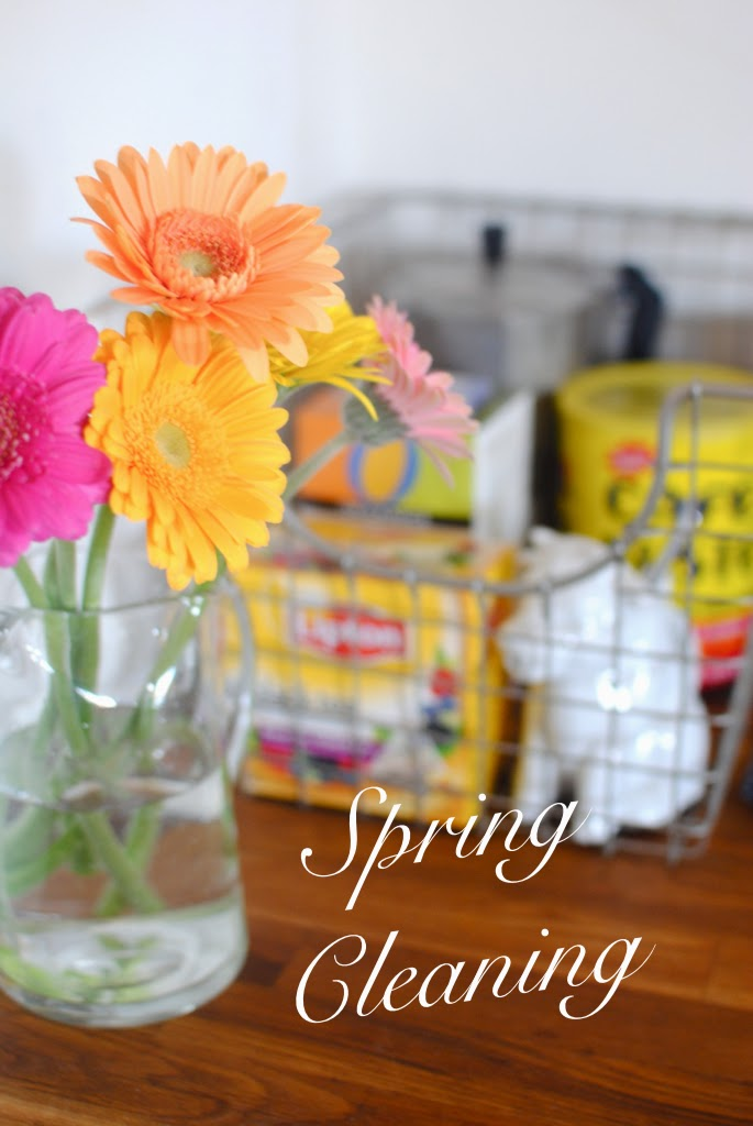 spring cleaning, home organziation tips