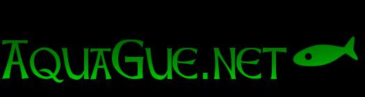 AQUAGUE