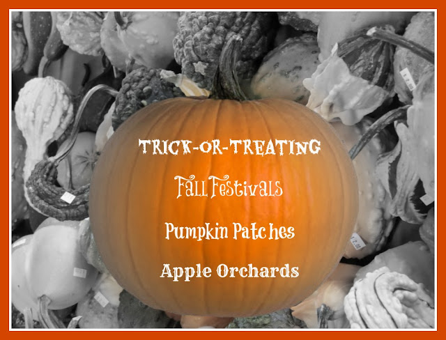 pumpkin patches, festivals, and apple orchards upstate south carolina