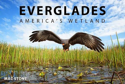 mac-stone-everglades-book