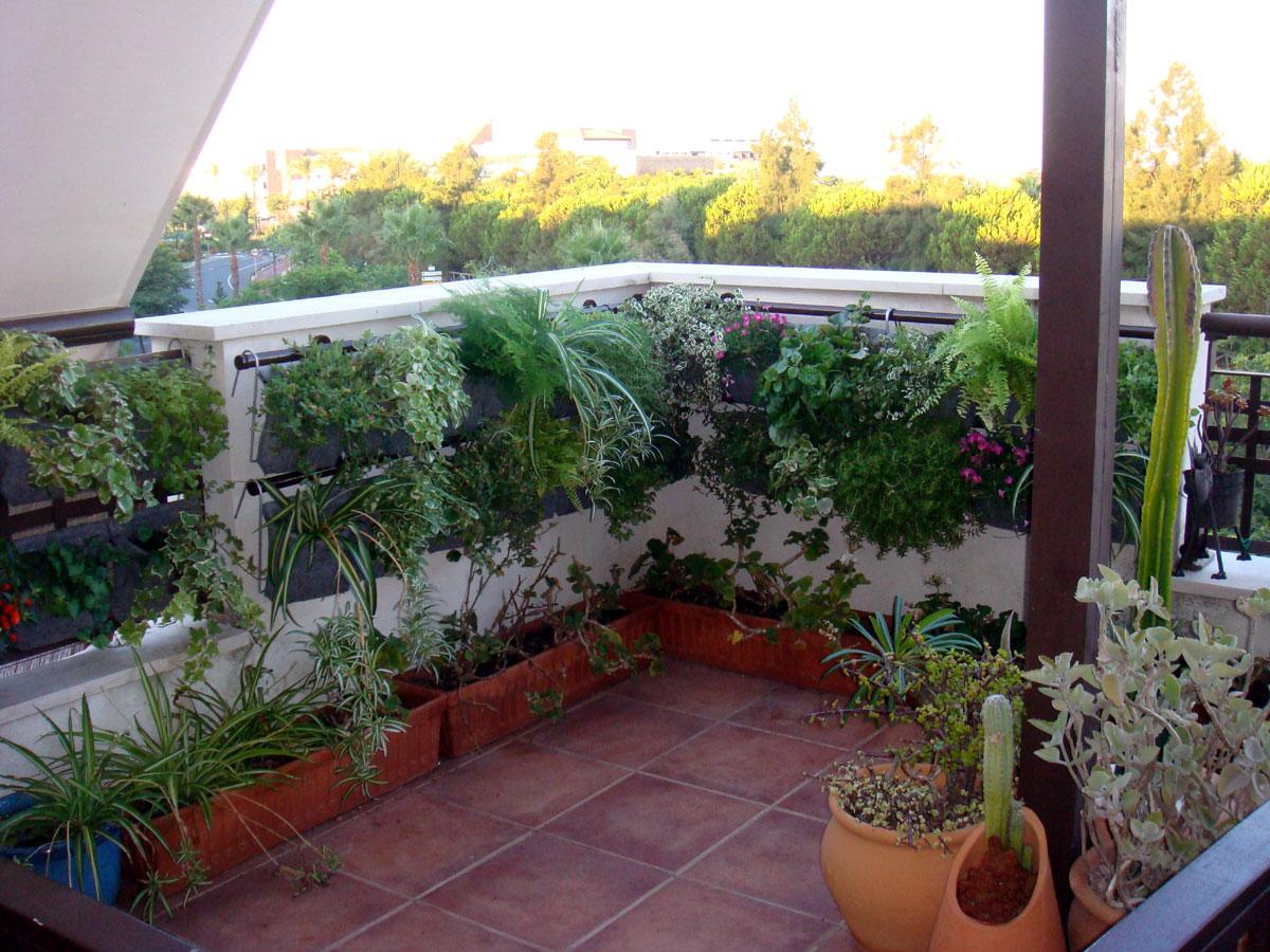 Terraza con jardn vertical foro de infojardn for Jardines urbanos en terrazas