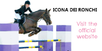 Icona Dei Ronchi - Il blog di Gaia Vincenzi