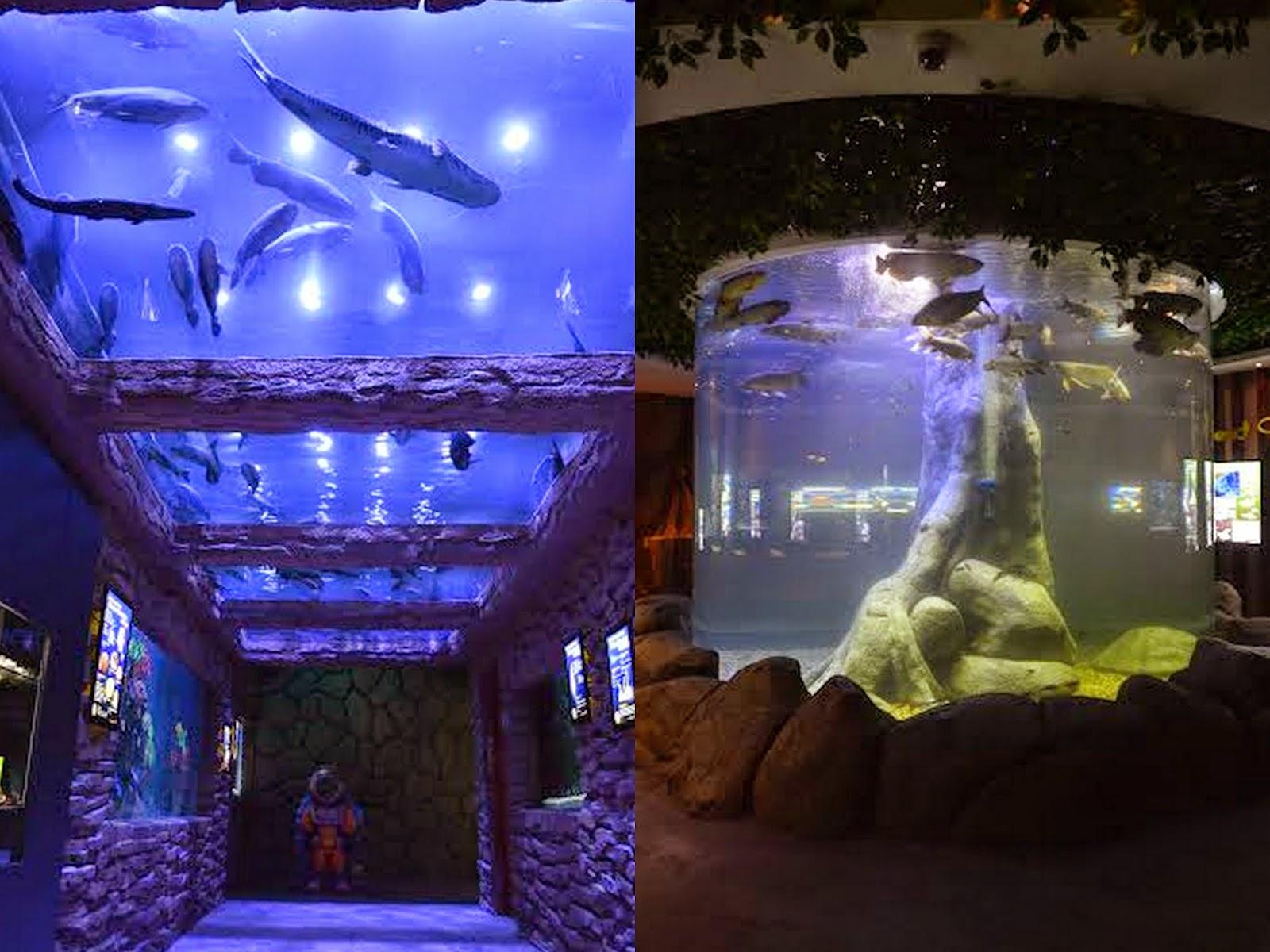 Oceanarium