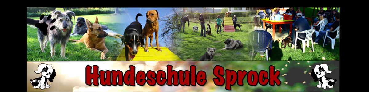 <center>Hundeschule Sprock</center>