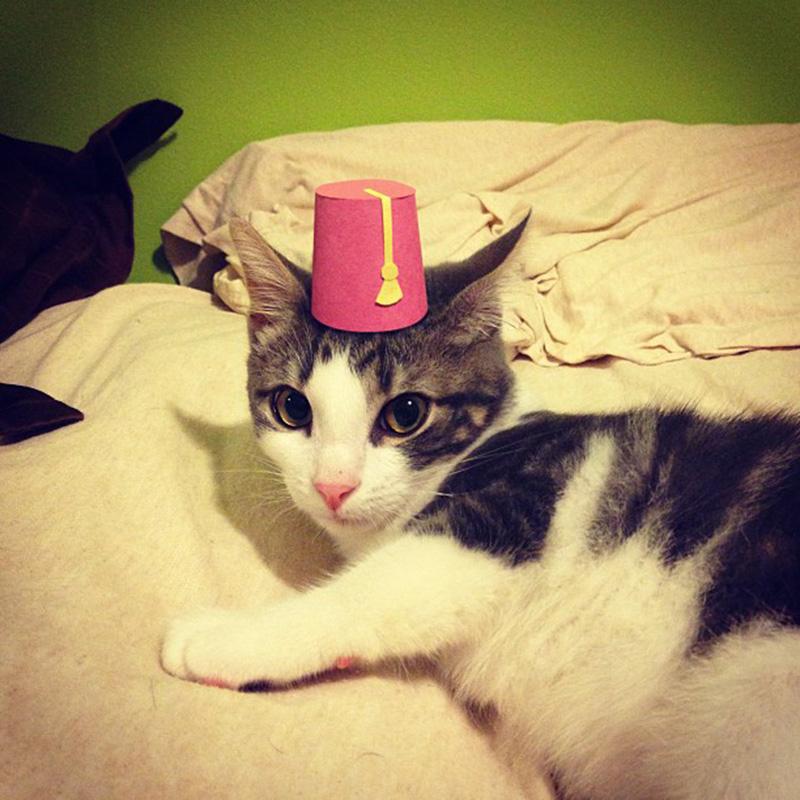 Tiny Pilgrim Hat For A Cat