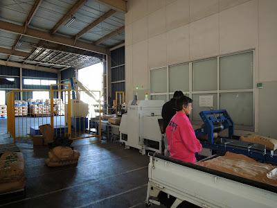 福島県 平成25年産米 全量全袋検査
