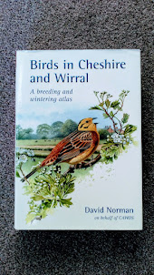 Birds in Cheshire and Wirral