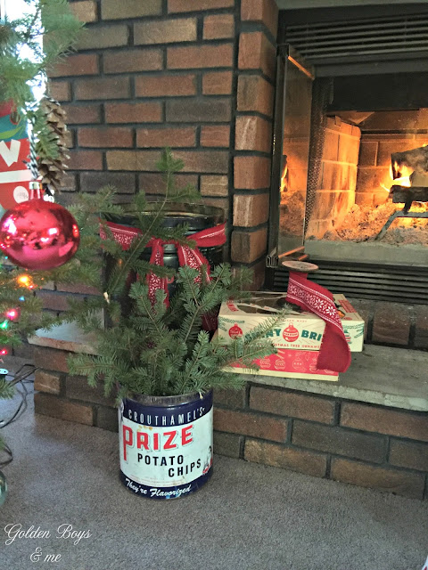 Vintage potato chip can with fresh cut greens as holiday Christmas decor - www.goldenboysandme.com