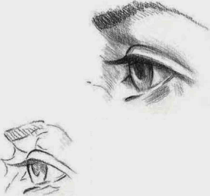 Sharp Eyes Drawing a Eyes in a Side View