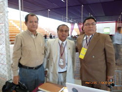 Apreciaciones del XVIII Congreso Nacional de Ingeniera Civil Cajamarca 2011