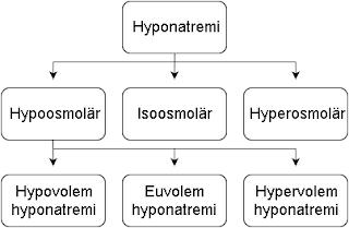 hyponatremi etiologi