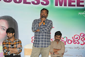 lakshmi raave maa intiki audio success meet-thumbnail-10