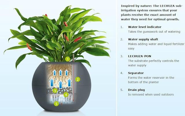 gardening, planters
