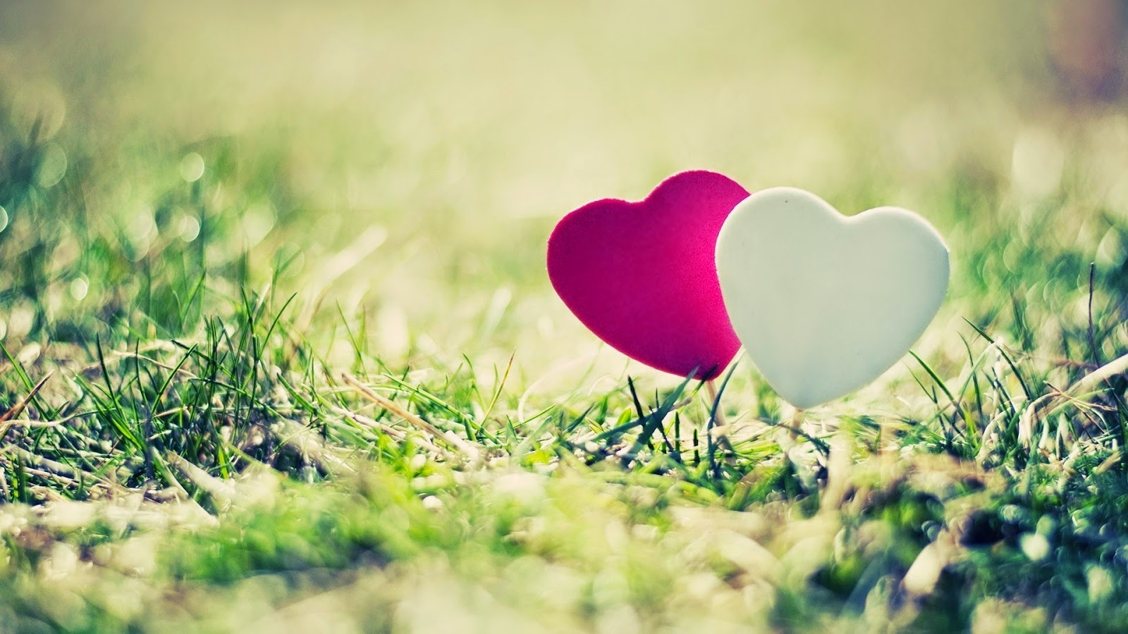 cute-Love-hearts-wallpapers