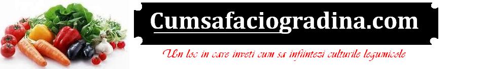 Cumsafaciogradina.com