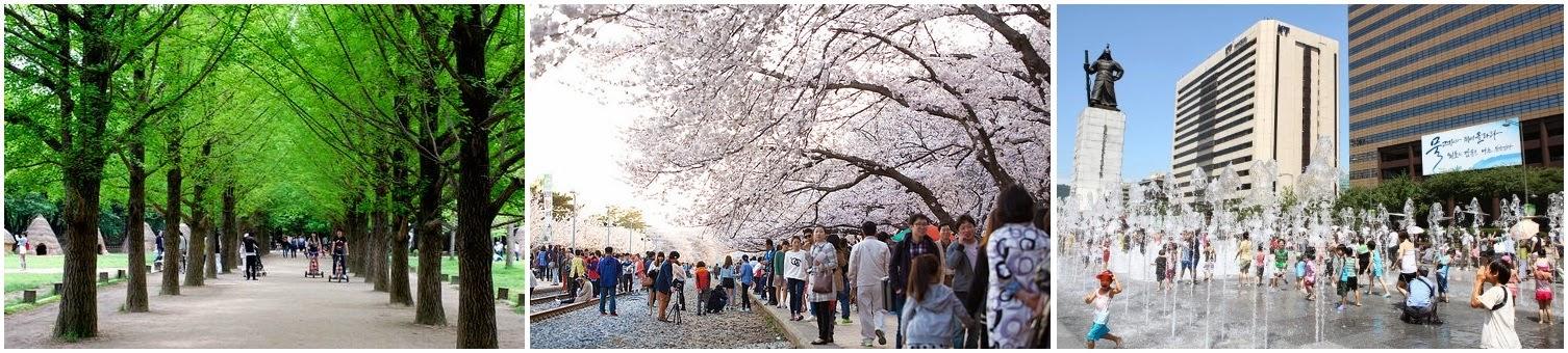 Du Lịch Hàn Quốc ngày 5:  Đảo Nami, Lễ hội hoa tại Seoul, Quảng trường Guanghwamun