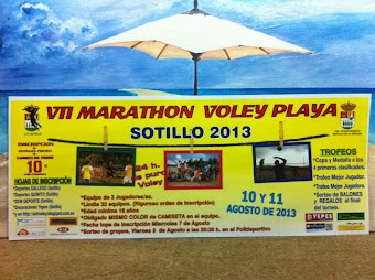Voley-Playa 2013