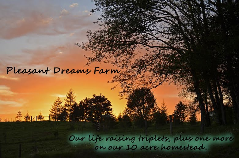 Pleasant Dreams Farm