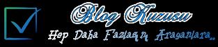Blog Kuzusu