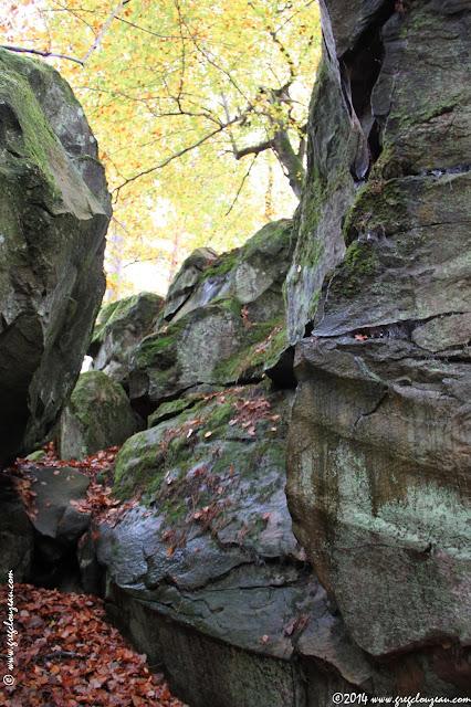 Condensation sur le grès de Fontainebleau
