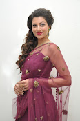 Hamsa Nandini at Bengal tiger audio-thumbnail-11