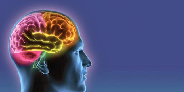 Struktur Otak Astronout Mungkin Berubah Karena Radiasi Antariksa