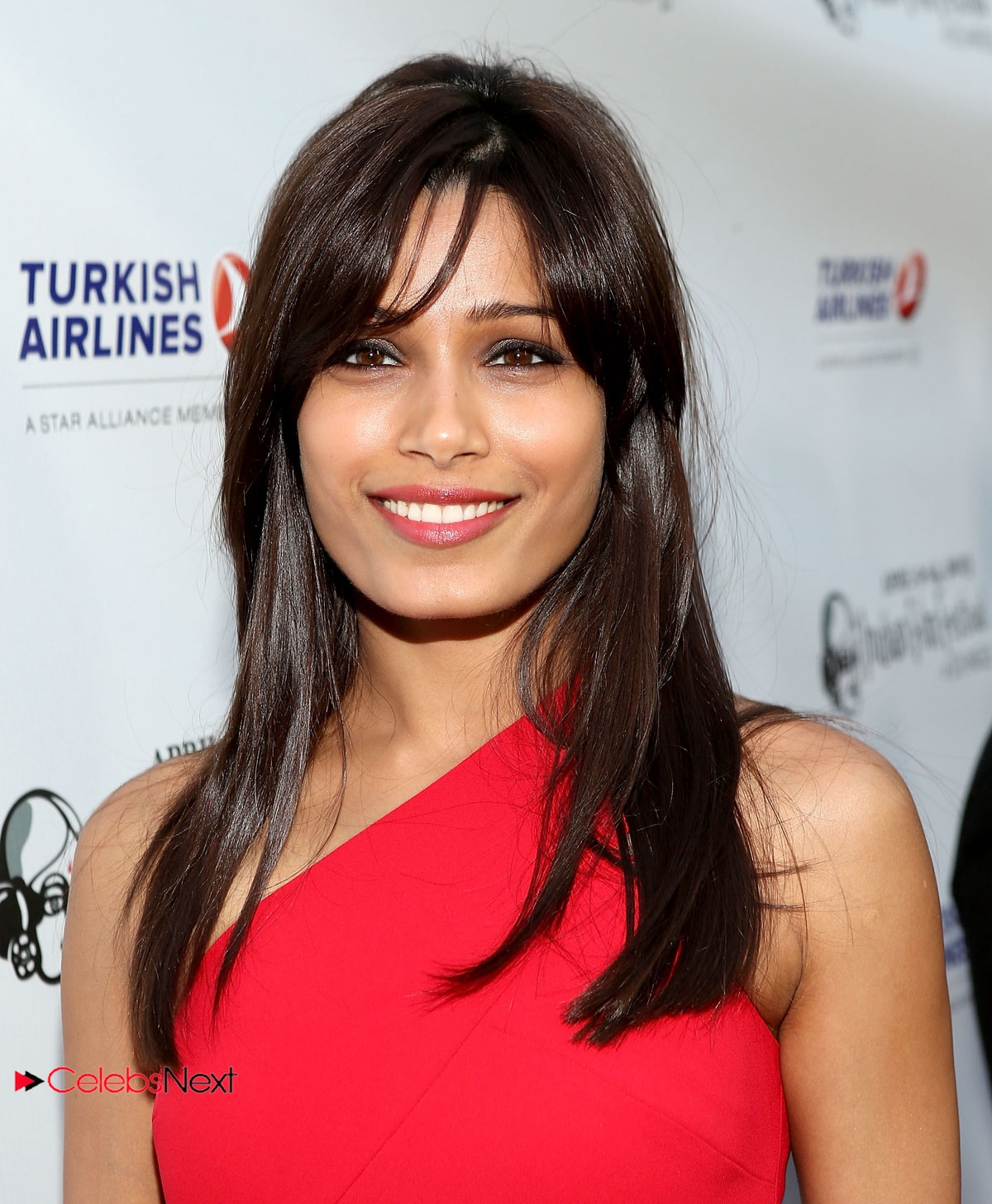 Freida Pinto Photos in One Shoulder Red Dress at Indian Film Festival