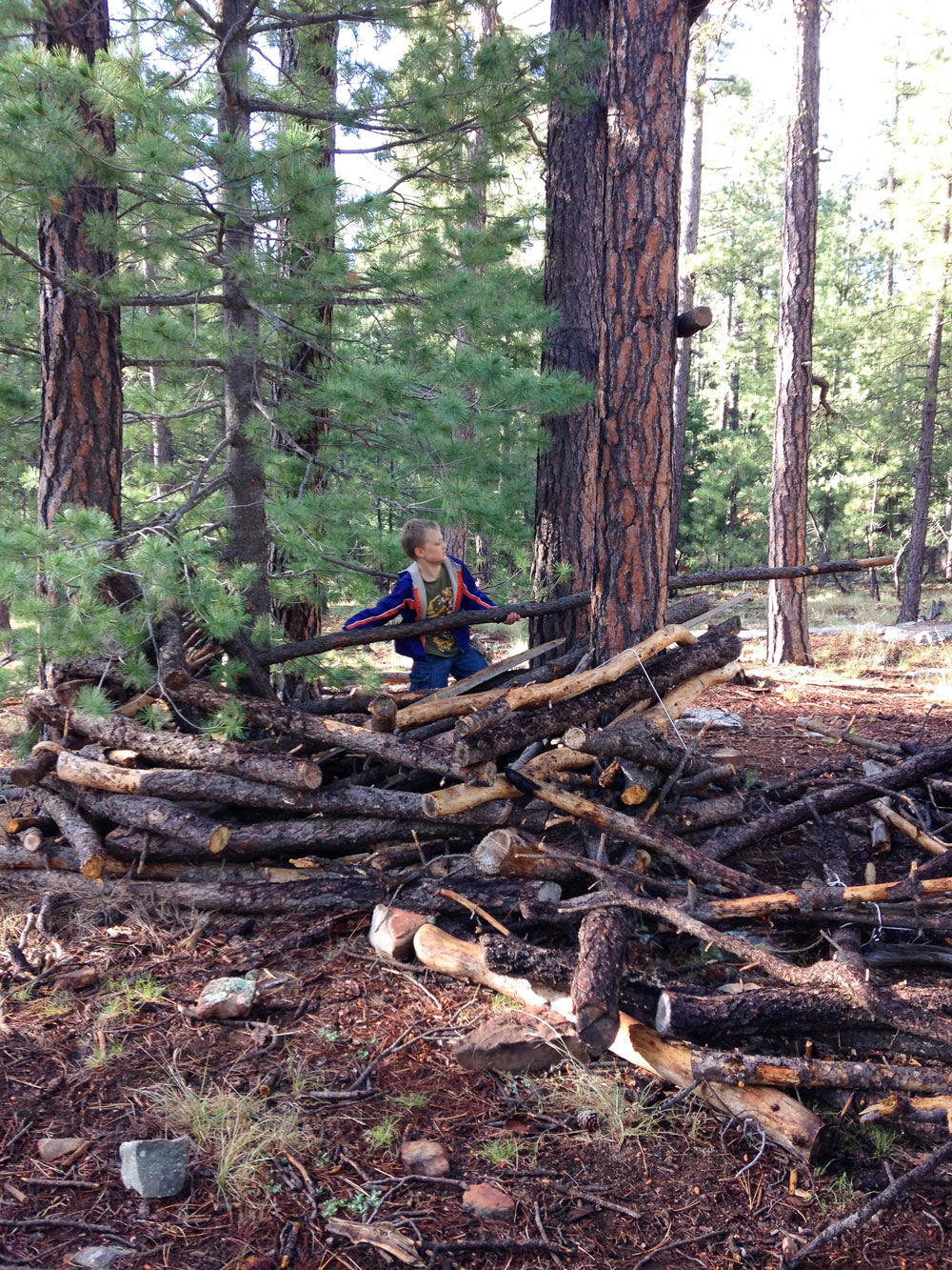 Fort Building - Woods Canyon Lake, Sitgreaves National Forest, AZ