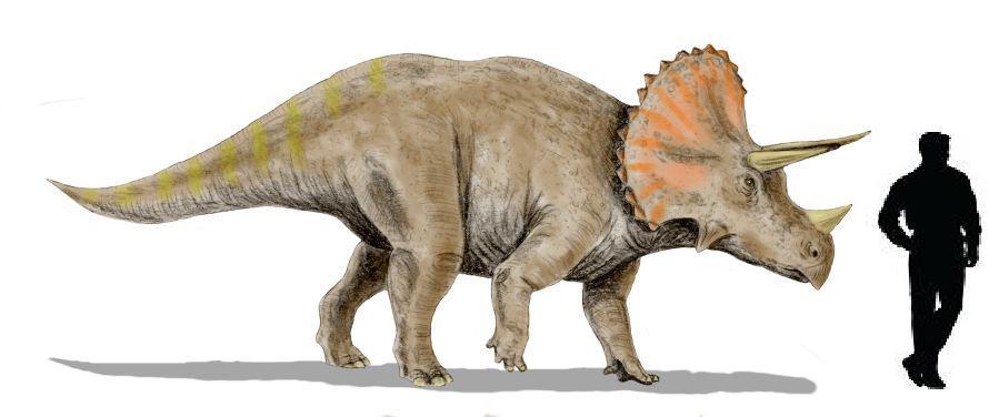 Los animales en la prehistoria teor as sobre la extinci n for Que significa contemporaneo wikipedia