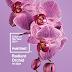 Radiant Orchid - 2014 színe