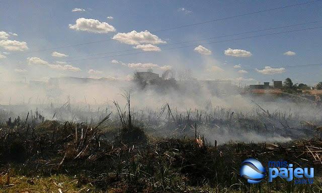 SECA NO PAJEÚ/Incêndios atingem: 'Capinzal em bairro de S.J.Egito e Zona Rural em Flores'