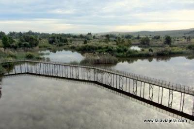 Laguna Corredor Verde Guadiamar, Sevilla