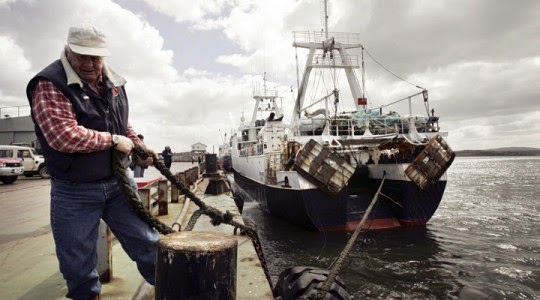 http://en.mercopress.com/2014/12/12/record-year-for-falklands-fish-catches