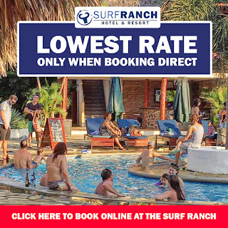 Lowest Rate - Book Now