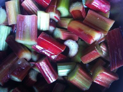 elderflower, rhubarb, compote, recipes, seasonal cooking, summer fruit,