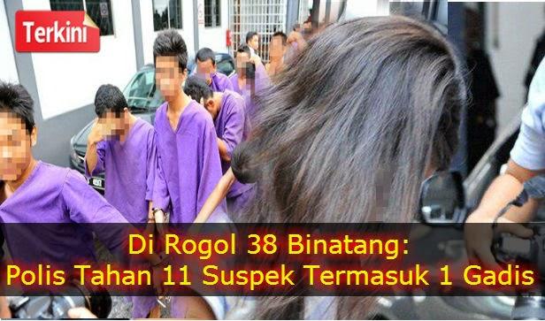 Di Ratah 38 Binatang: 12 Suspek Kini Di Tahan