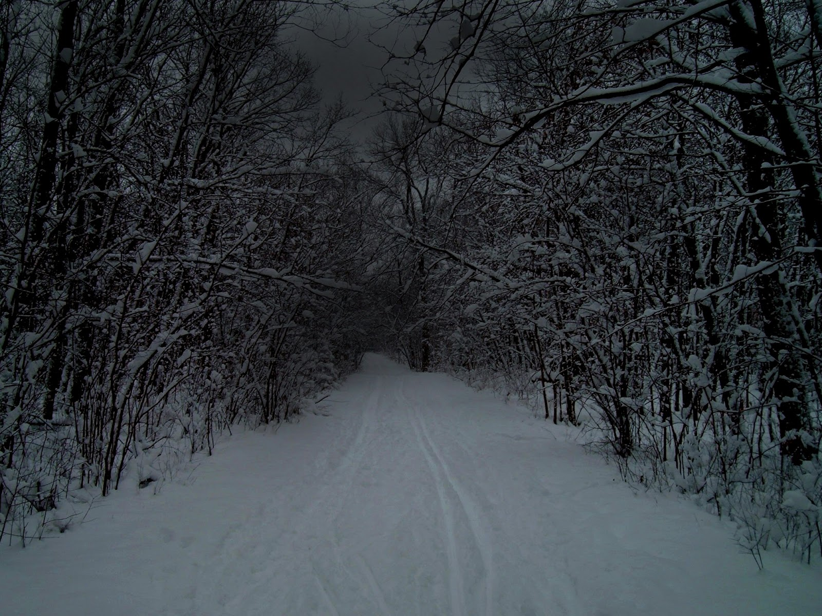 robert frost stopping by woods essays Analysis of stopping by woods on a snowy evening stopping by woods on a snowy evening is a very well know poem by robert frost.