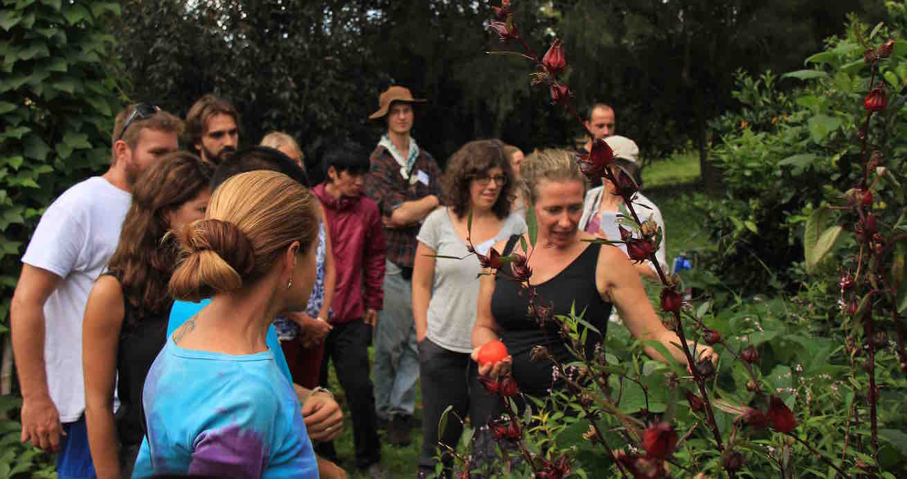Our Permaculture Life Morags Organisations