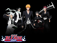 BLEACH Complete
