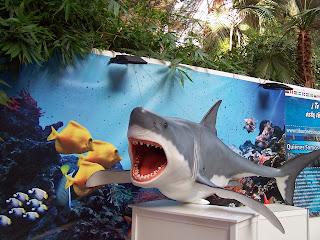 Estación de Atocha - Exposición SOS Tiburones, noviembre 2013 - www.ocioenfamilia.com