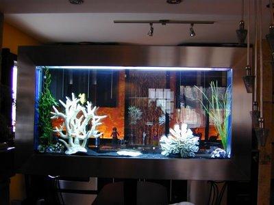 The Best Aquarium Design For Home Interior ~ Home Interior Project