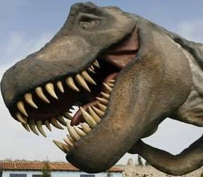 fotos dinosaurios reales