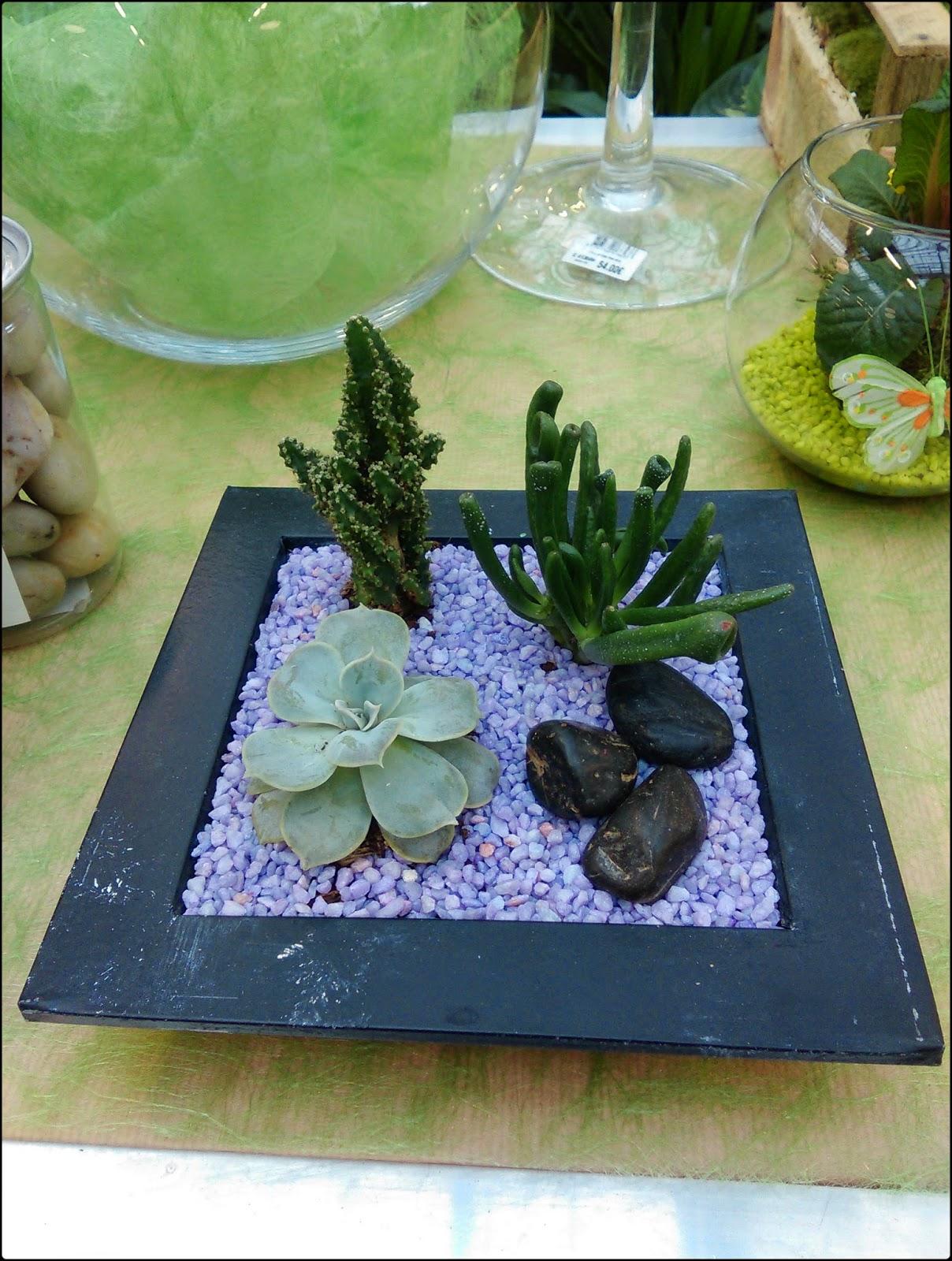 le blog de lorraine j 39 ai test l 39 atelier terrarium et plantes grasses chez truffaut. Black Bedroom Furniture Sets. Home Design Ideas