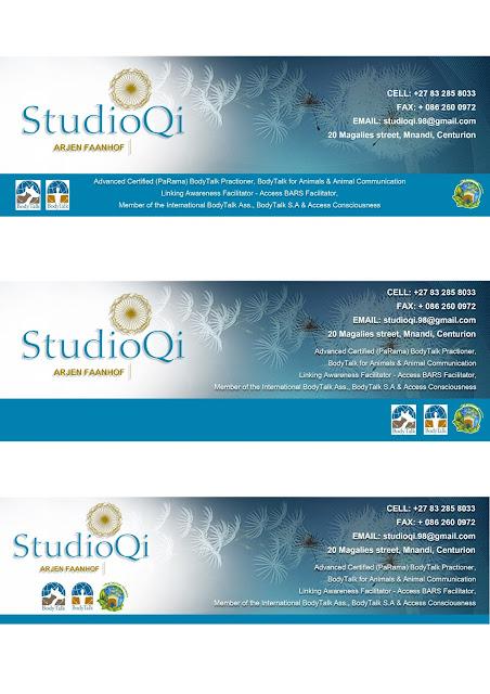 Creative Portfolio of Lisha Naidu: Studio QI - Email Signature Design